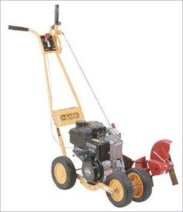 Where to find LAWN EDGER, GAS in Chicago